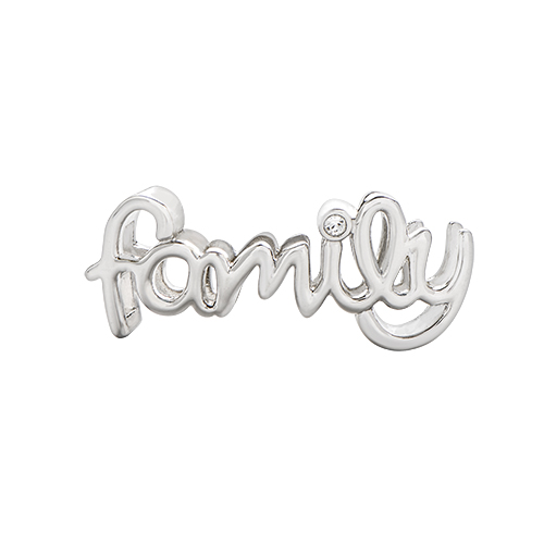 BS1010 Silver Scripted  Family  Slider with Swarovski Crystal