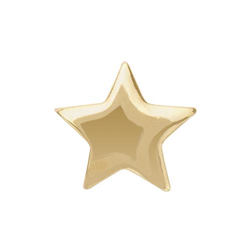 CH4024 Gold Star Charm