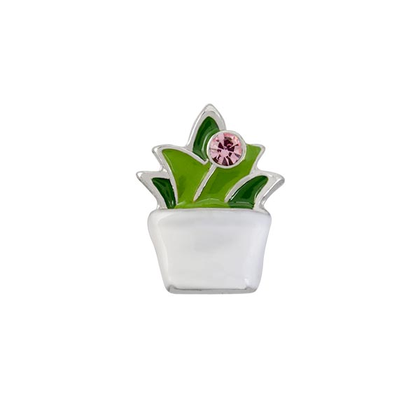 CH4137 Succulent in White Pot Charm