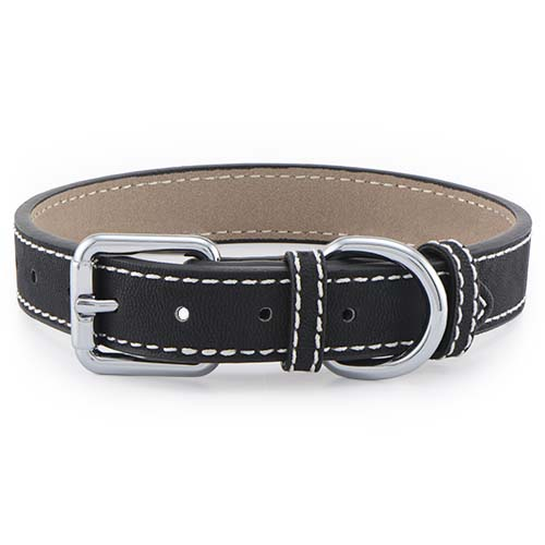 CP2001 Black Pet Collar MED 12 16